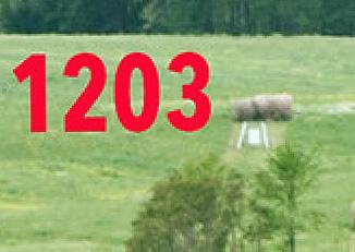 1200 Target